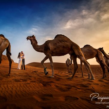 Luxury Wedding Dubai Photographer, Annie & Thomas