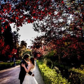 The Wedding Day in Palermo | Salvo & Mirella |